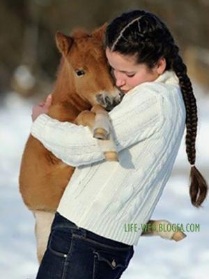 http://life-web.persiangig.com/image/love/ADAMA.jpg